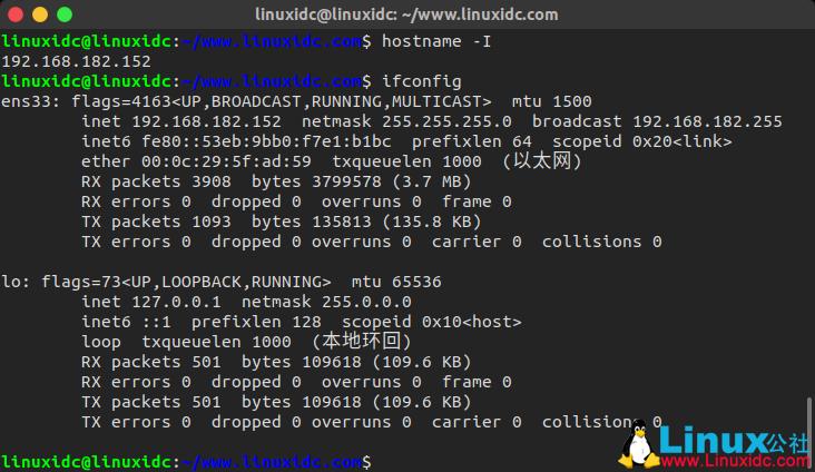 如何在 Linux 中查看 IP 地址