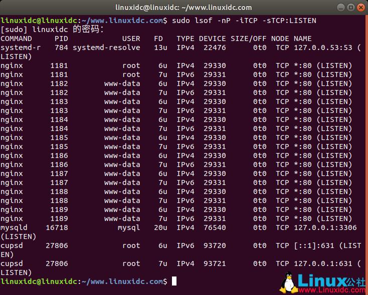 如何在 Linux 中查看正在使用的端口